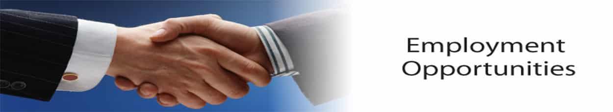 Jobs-Banner – Best Overseas Education consultant